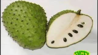 Launch of the National Soursop Drive