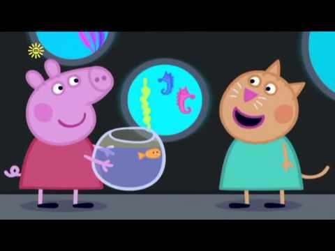 Peppa pig   the aquarium english episodes