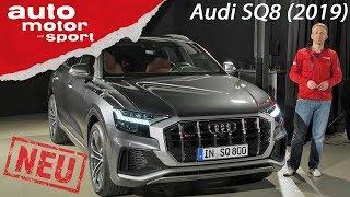 Audi SQ8 TDI (2019): Das beste S-Modell? – Review/Neuvorstellung   auto motor und sport