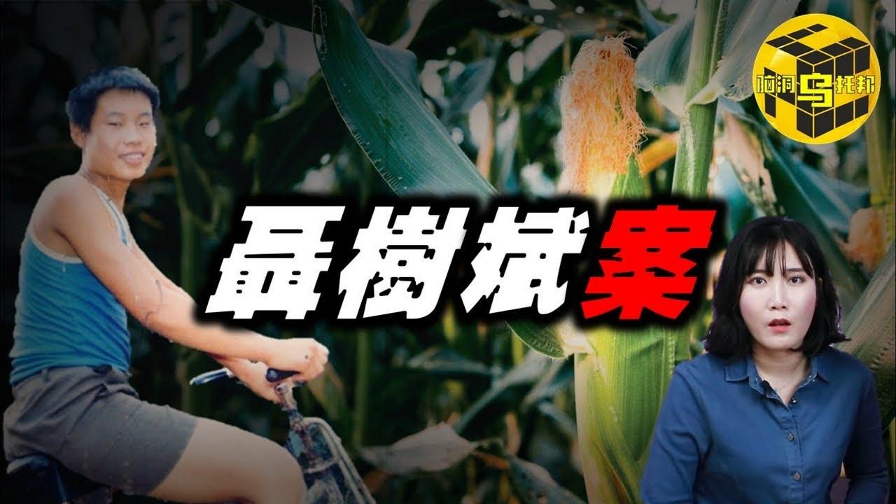 【小烏說案】一場中國司法界的奇觀 是里程碑?還是恥辱柱?聶樹斌案始末[腦洞烏托邦 | 小烏 | Xiaowu]