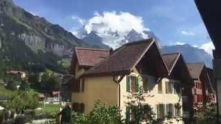 Summer Walk Through The Wengen   Switzerland
