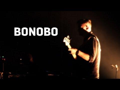 Клип Bonobo - Towers (feat. Szjerdene)