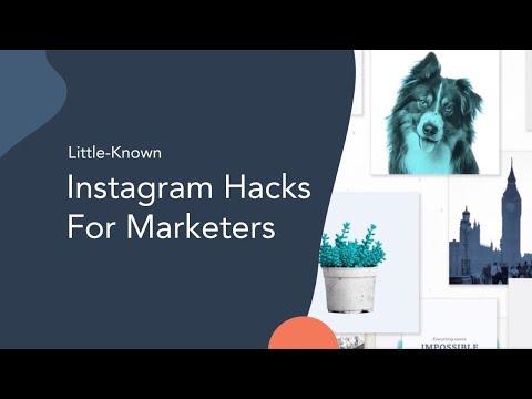 Understanding the Facebook and Instagram Algorithms
