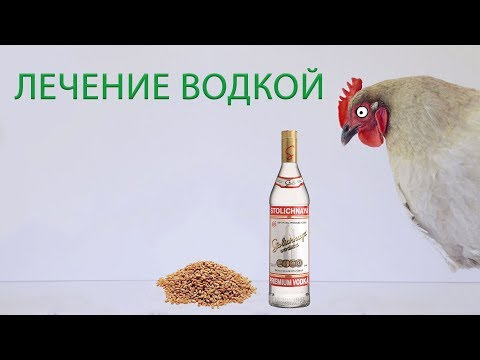 ЛЕЧЕНИЕ КУР ВОДКОЙ (часть 14) \ Реальный опыт лечения и профилактики куриных заболеваний