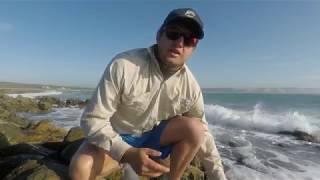 ZLF Jaeger's trip part 2. Catching a Bucket list fish!