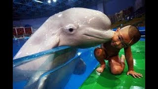 Babies & Kids have fun time at the Aquarium - Cute Babies and Pets Compilation