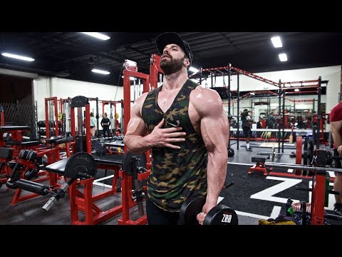 PUMP IS LIFE | SHOULDERS AND ARMS
