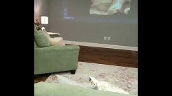 Baby Bloom HD Ultrasound Studio in Jacksonville, Florida Specializing in 3D, 4D & HD Baby Scans