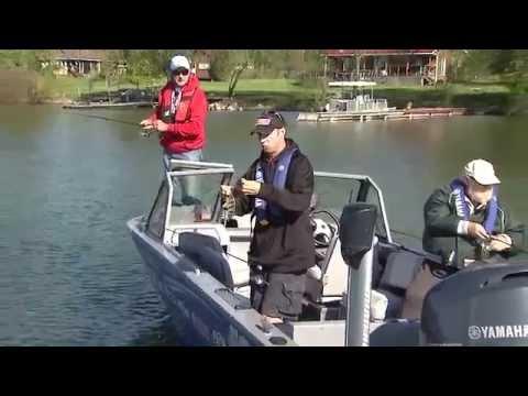 Jumbo Perch Fishing