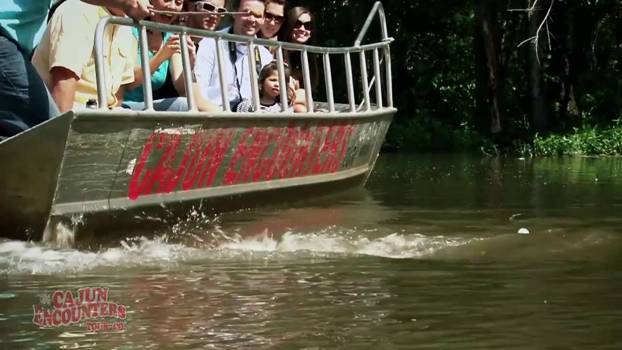 Which Swamp Tours of New Orleans are Best?   Free Tours by Foot