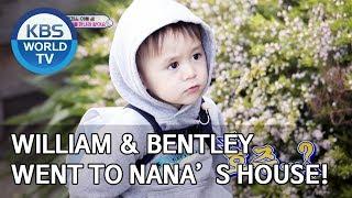William & Bentley went to Nana's house in Australia [The Return of Superman/2019.11.10]