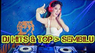 Download Mp3 Dj Hits & Top Sembilu