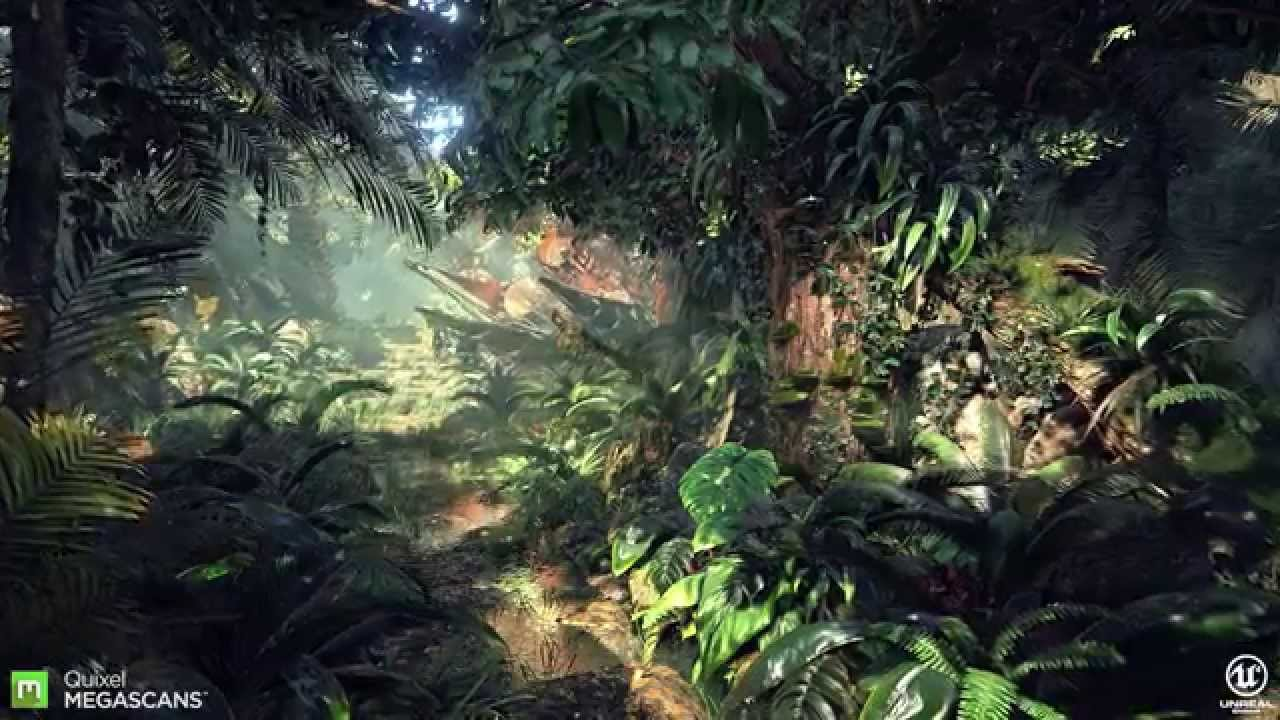 Download Engine 3d Live Wallpaper Megascans Jungle Youtube