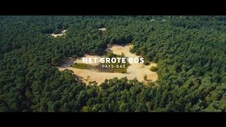 RCN het Grote Bos **** - Le camping en Utrecht (Doorn)