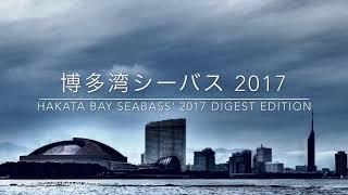 博多湾シーバス2017