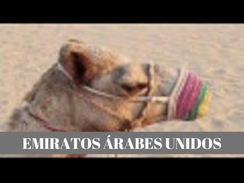 TYH 1544 EMIRATOS ÁRABES UNIDOS / DUBAI - ABU DHABI
