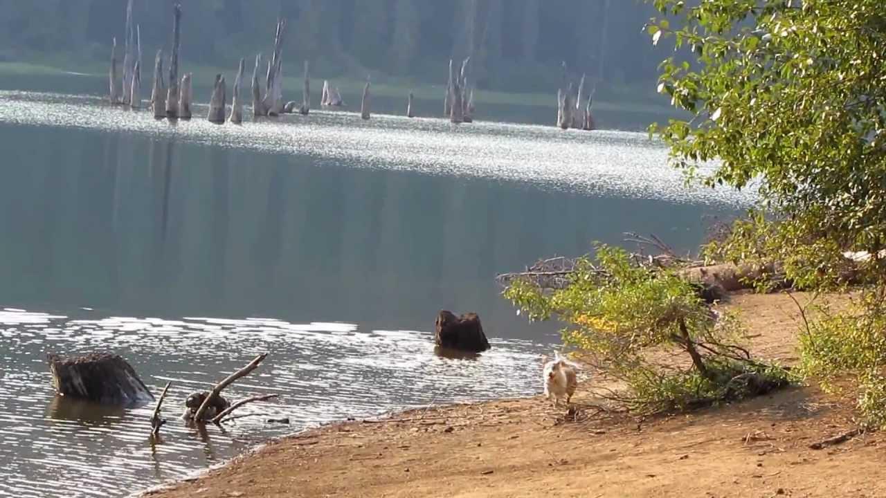 Goose Lake Wa Suburban Eschat...