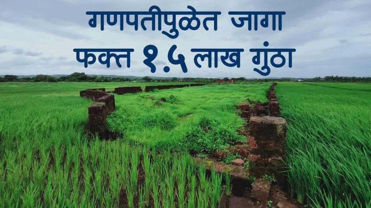 गणपतीपुळेमध्ये जागा फक्त १.५ लाख प्रती गुंठा ! Best Kokan Property in Ganapatipule !