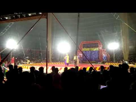 SHASTRI PARK Asiad circus(7)