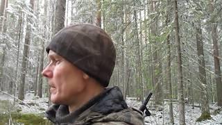 В поисках волка - логовища, по случайному снегу!