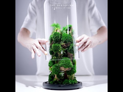 The Dystopian - a preserved moss terrarium, botanical sculpture by TerraLiving