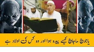 Yajuj Majuj Kaise Paida Hua Aur Woh kiski Aulad h Maulana Makki Al hijazi