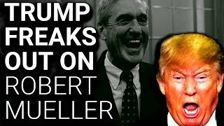 Trump Unleashes Unhinged Attack on Robert Mueller