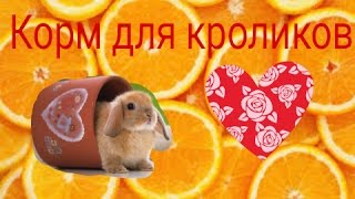 Корм для кроликов своими руками)