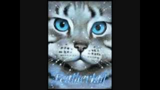 Top 10 Saddest Warrior Cat Deaths