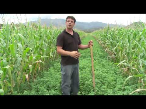 [NCTV] Les coulisses de la science - Agriculture bio : La fertilisation des sols