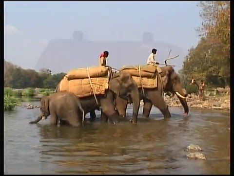 Fishing in India with David McIntyre and Andrew Hosegood