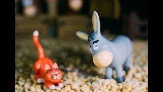 Мультик про домашних животных для детей - Про кота 2018 HD