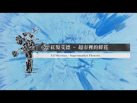 Ed Sheeran 紅髮艾德 - Supermarket Flowers 超市裡的鮮花 - 中文歌詞MV