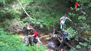 Экология и природопользование - Летняя школа