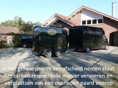 paardencrematorium youtube project 13 maart 2012 (2)