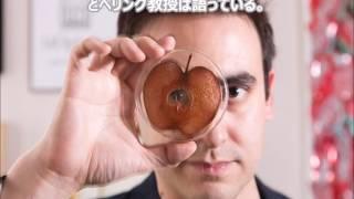 【閲覧注意】マッドサイエンティストが人間の細胞をリンゴに移植した結...