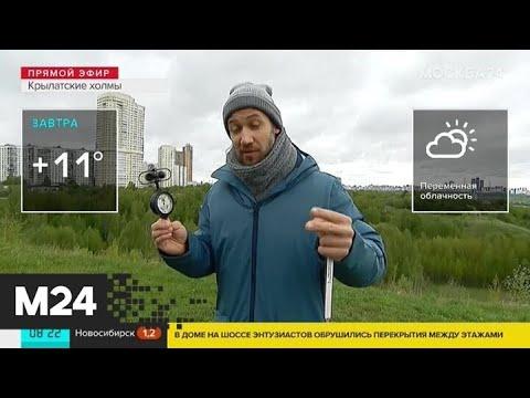 """Утро"": в Москве резко ухудшилась погода - Москва 24"