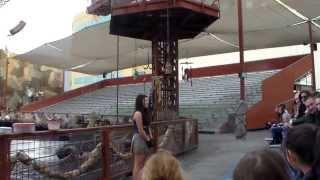 WaterWorld Show - Behind the Scenes (VIP)