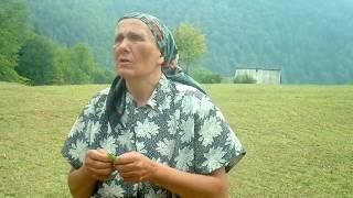 Interviu cu Dobrea Ana-lui Ionel Tara Motilor - cantec la frunza -
