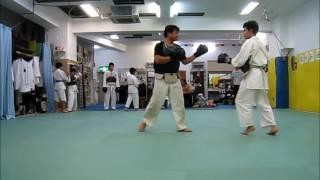 日本拳法・拳剛塾。