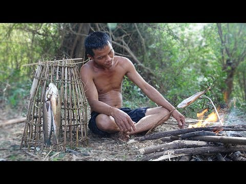 Primitive Culture: Easy to Catch Fish