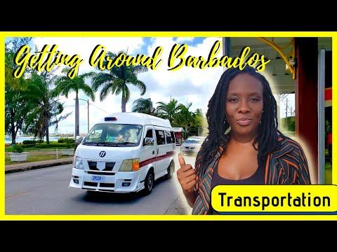 How to get around Barbados, Reggae Bus, Public Transportation Barbados | Taxi or Rent a Car