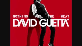 Baixar David Guetta - The Future (Nothing But The Beat)