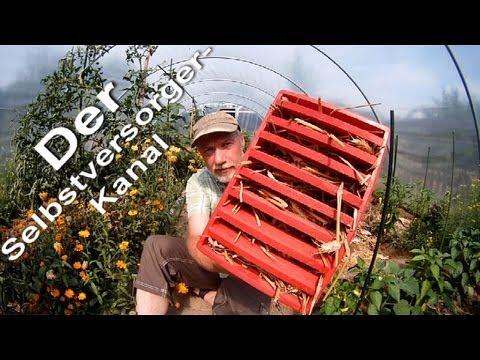 Florfliegenkasten ganz einfach selber bauen