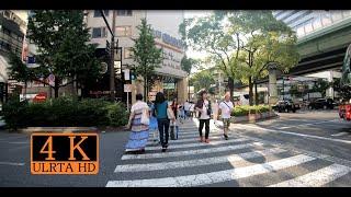 近鉄難波からJR難波まで歩いてみた  ( Osaka Namba → JR Namba  )