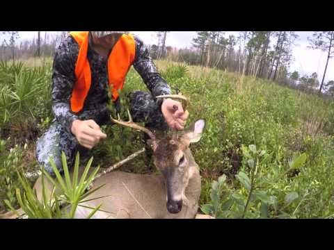 GREEN SWAMP WMA MONSTER BUCK!