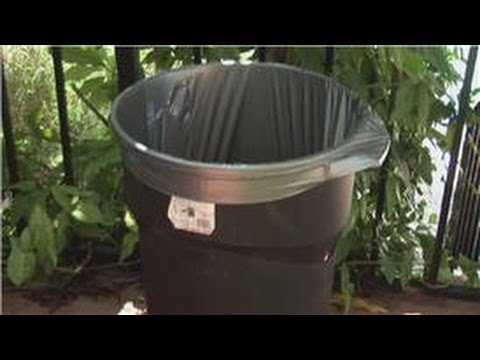 Home Pest Control : How To Keep Bugs, Wasps, Bees And Mosquitoes Away From  Your Yard
