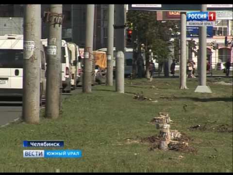 На Комсомольском проспекте в Челябинске спилили липы