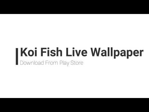 Koi Fish Live Wallpaper   Change You Screen To Beautiful Swiming Fish Pond