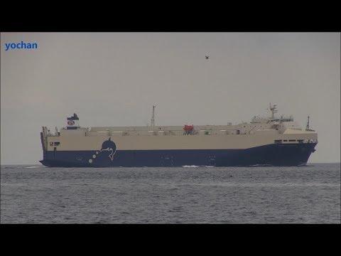 Vehicle Carrier: TRANS FUTURE 8 (TOYOFUJI SHIPPING CO.,LTD. - Toyota Group) IMO: 9477701